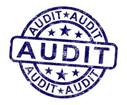 partnership audits low