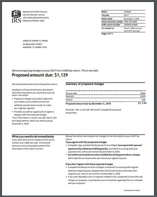 IRS CP2000 Notice