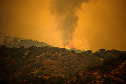 IRS extends relief to California wildfire victims